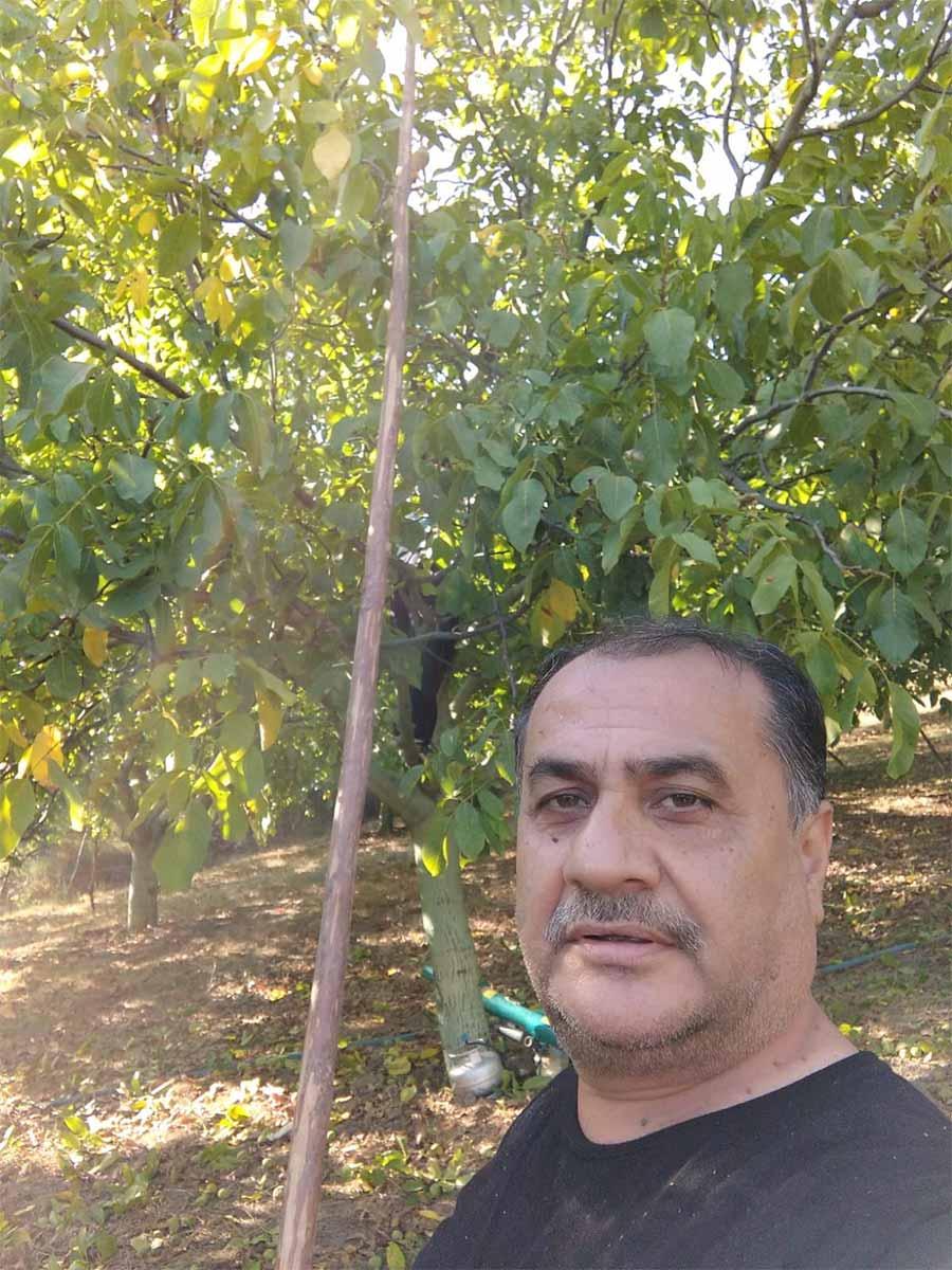 2020/09/1599941402_geyve_ceviz_hasadi120920_09.jpg