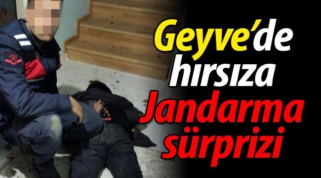 Geyve'de Hırsıza Jandarma Sürprizi