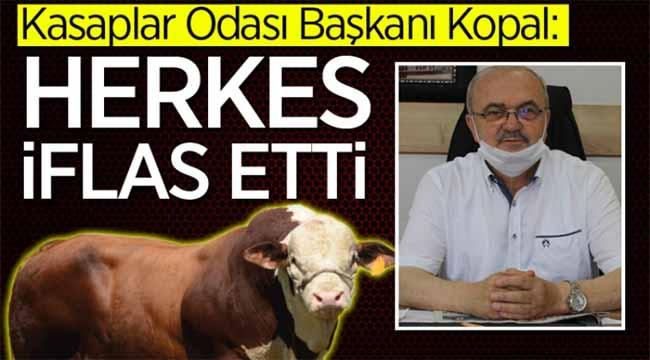 Sakarya'daki hayvan üretimi için acı sözler