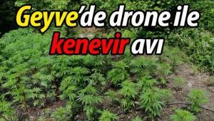 Geyve'de drone ile kenevir avı