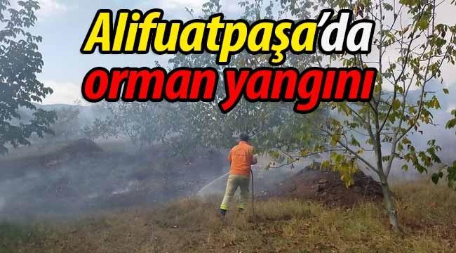 Alifuatpaşa'da orman yangını!
