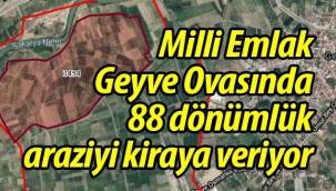 Geyve Ovasında 88 dönümlük arazi kiraya veriliyor